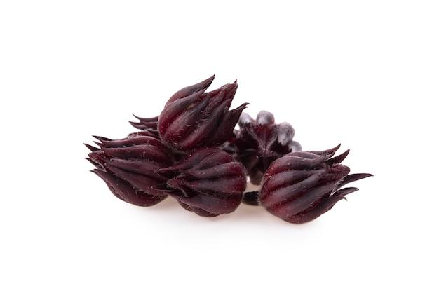 Hibiscus sabdariffa oder roselle früchte isoliert auf weiß. Premium Fotos