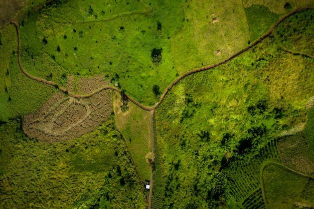 High angle over view bilder oberfläche und pfade in landwirtschaftlichen flächen abstrakt Premium Fotos
