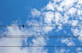 Himmel, luft, flauschig Kostenlose Fotos