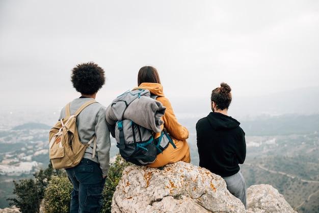 Hintere ansicht des männlichen und weiblichen wanderers, der den bergblick übersieht Kostenlose Fotos