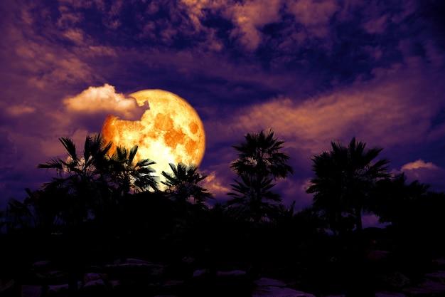 Hinterer schattenbildbaum des blutmondes in der dunklen nachthaufenwolke Premium Fotos