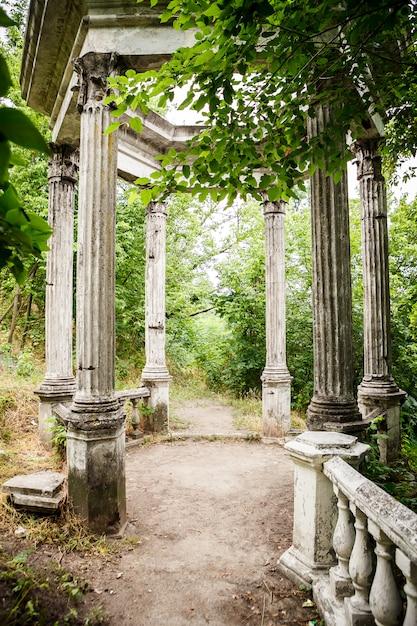 Hinterhofgarten mit schmaler straße zur laube Premium Fotos
