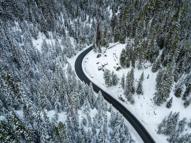 Hochwinkelaufnahme einer kurvenreichen autobahn in einem mit schnee bedeckten fichtenwald im winter Kostenlose Fotos