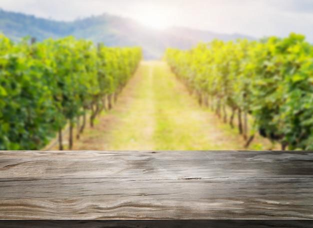 Hölzerne tabelle in der grünen frühlingsweinberglandschaft. Premium Fotos