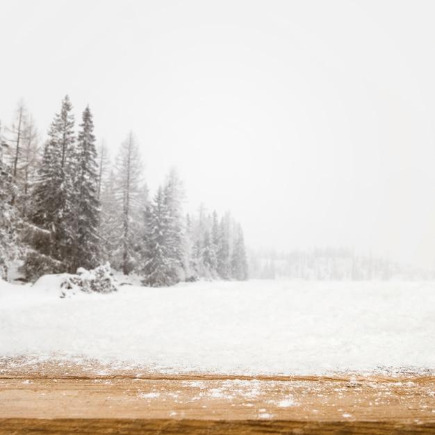 Hölzernes brett und feld mit bäumen im schnee Kostenlose Fotos