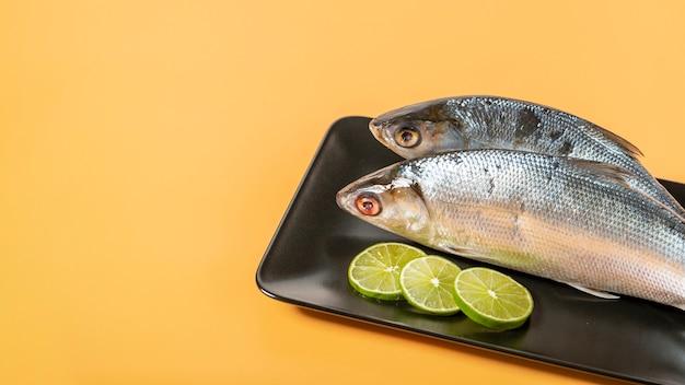 Hohe winkeldekoration mit fischen auf gelbem hintergrund Kostenlose Fotos