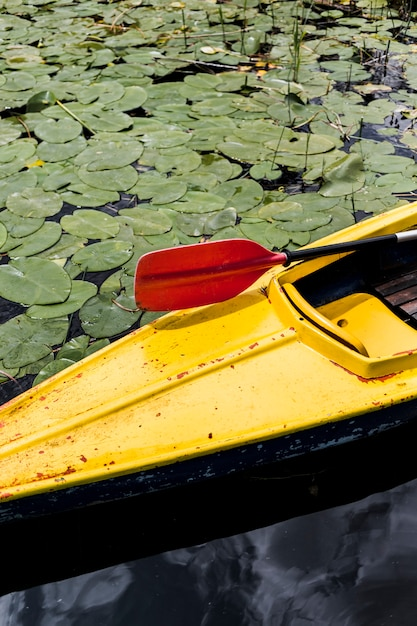 Hohe winkelsicht des kanus mit dem roten paddelruder, das auf see mit travertinen schwimmt Kostenlose Fotos