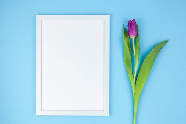 Hohe winkelsicht des weißen fotorahmens und der tulpe auf türkishintergrund Kostenlose Fotos