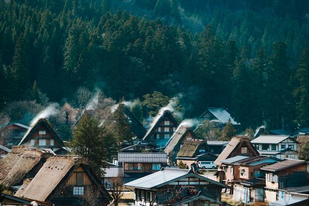 Hohe winkelsicht von sirakawago und von grünem wald, gifu, japan. das sehr berühmte erbe sightseeing Premium Fotos