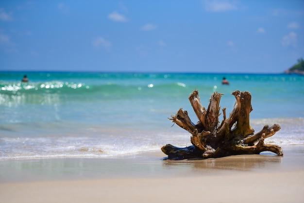 Holz auf dem meer Premium Fotos