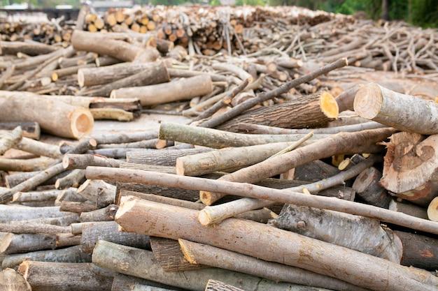 Holz in schichten angeordnet, stapel von holzstämmen bereit für die industrie. Premium Fotos