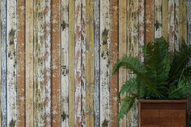 Holz mit grünpflanze für hintergrund Premium Fotos