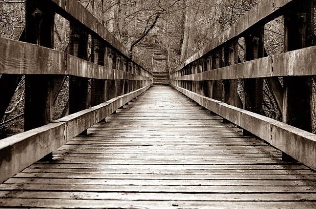 Holz übergang architektur wald brücke Kostenlose Fotos