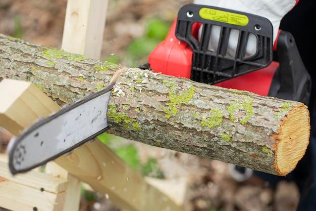 Holzfäller in handschuhen arbeitet mit kettensäge und sägt einen baum im wald Premium Fotos
