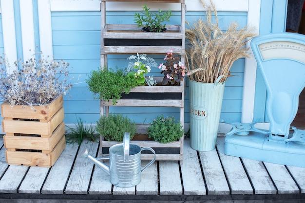 Holzkiste mit trockenen blumen und grünen pflanzen durch wandhaus Premium Fotos