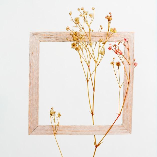 Holzrahmen mit blumenzweig Kostenlose Fotos