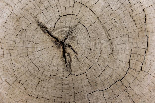 Holzschnitt hintergrund Premium Fotos
