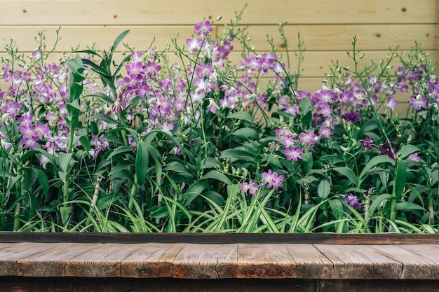 Holztisch vor orchideenblume im orchideengarten am winter- oder frühlingstag Premium Fotos