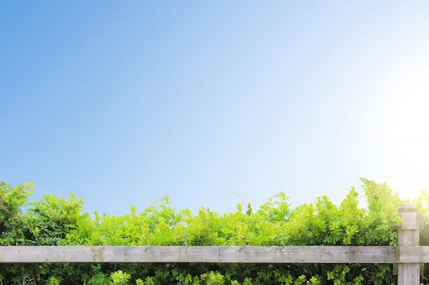 Holztischplatte mit der naturlandschaft Premium Fotos