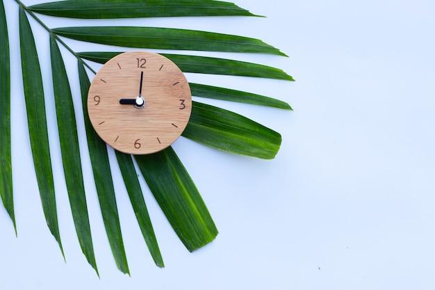 Holzuhr auf grünen blättern auf weiß Premium Fotos