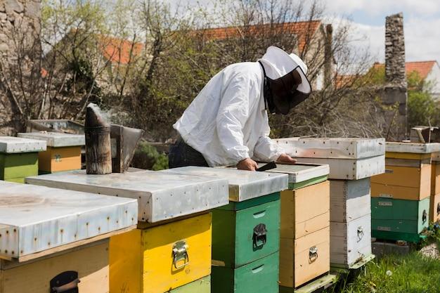 Honigfarm landschaft Kostenlose Fotos