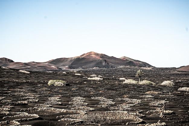 Horizontale aufnahme der schönen landschaft in lanzarote, spanien bei tageslicht Kostenlose Fotos