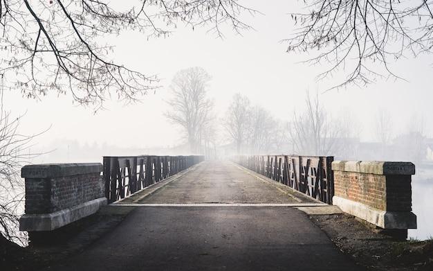 Horizontale gruselige aufnahme einer brücke, die zu einem nebligen wald mit häusern führt Kostenlose Fotos