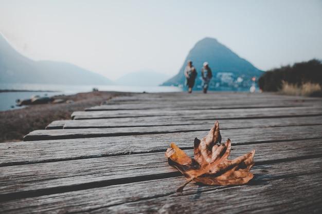 Horizontale nahaufnahmeaufnahme eines herbstahornblattes lokalisiert auf einem hölzernen dock nahe dem schönen meer Kostenlose Fotos