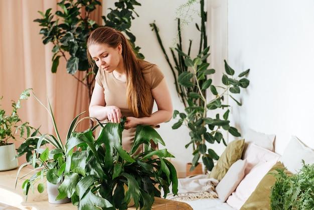 Hübsche junge frau wäscht die blätter von zimmerpflanzen zu hause Premium Fotos