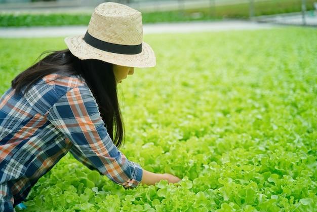 Hübsches mädchen des jungen asiatischen landwirts, das im gemüsewasserkulturbauernhof mit glück arbeitet Premium Fotos