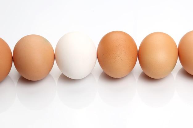 Hühnereier auf weißem hintergrund Premium Fotos
