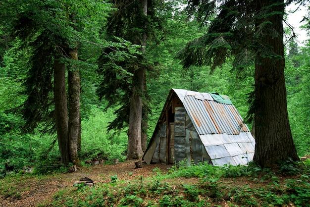 Hütte im wald in den bergen Premium Fotos