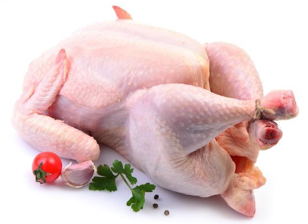 Huhn isoliert Premium Fotos