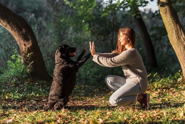 Hund, der seinem tierhalter hoch fünf am park gibt Kostenlose Fotos