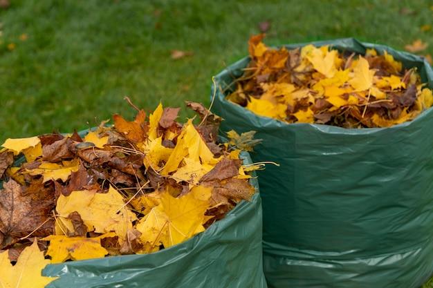 Im herbst gefallene ahornblätter werden in einem biologisch abbaubaren beutel gesammelt und für die weitere kompostierung vorbereitet. umweltschutz. null-abfall-konzept. Premium Fotos