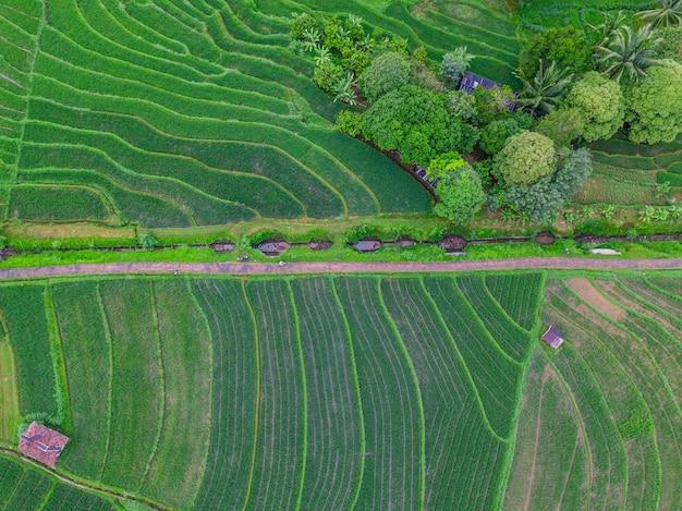 Indonesiens natürliche schönheit mit luftbildern in den bergen Premium Fotos