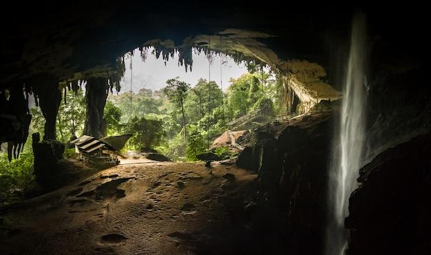 Innerhalb niah great cave, heraus schauend, in niah national park, borneo, sarawak, malaysia Premium Fotos