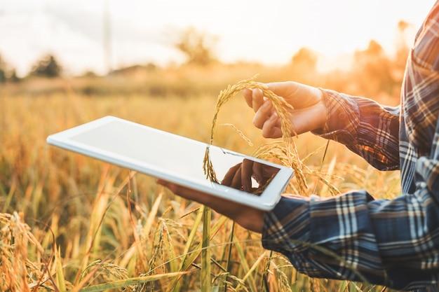 Intelligente landwirtschaft landwirtschaftliche technologie und ökologischer landbau frau, die die forschung nutzt Premium Fotos