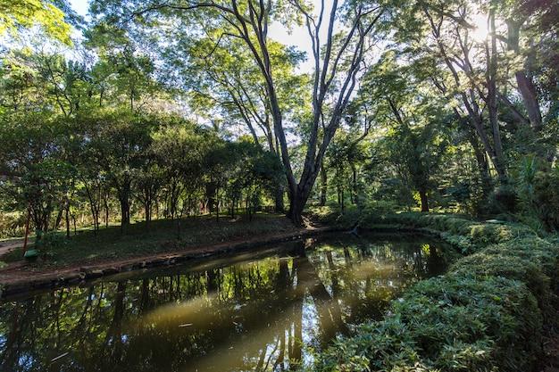 Japanische gärten am ribeirao preto-stadtzoo fabio barreto. bundesstaat sao paulo. Premium Fotos
