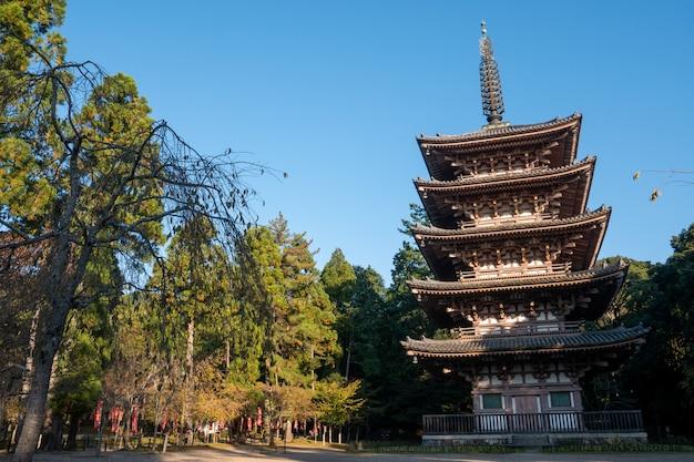 Japanischer herbstfall. kyoto daigoji-tempel. Premium Fotos