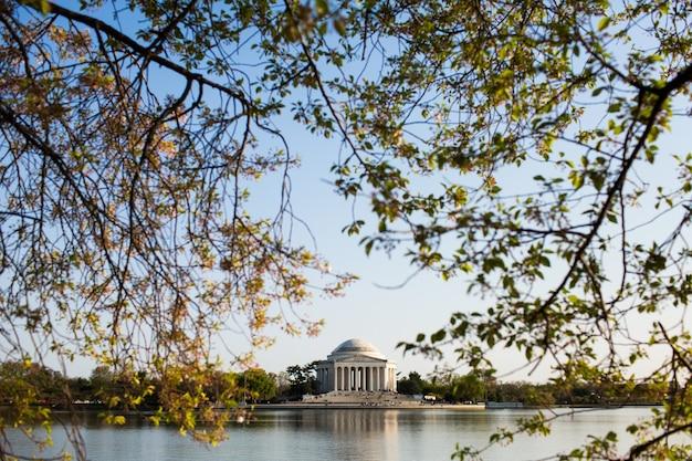 Jefferson memorial umgeben von wasser und grün unter einem blauen himmel in washington Kostenlose Fotos