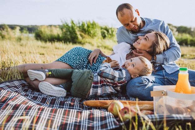 Junge familie mit dem kleinen sohn, der picknick im park hat Kostenlose Fotos