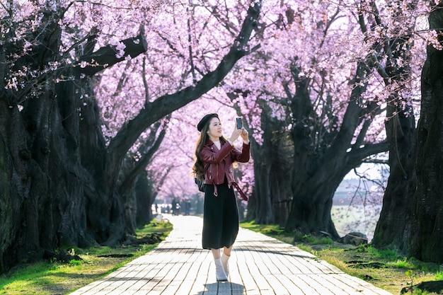 Junge frau, die im kirschblütengarten an einem frühlingstag geht. reihenkirschblütenbäume in kyoto, japan Kostenlose Fotos