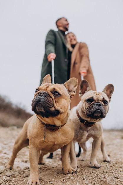Junge gehende paare ihre französischen bulldoggen im park Kostenlose Fotos
