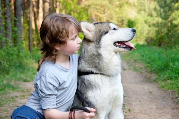 Junge mit seinem hund malamute auf einem spaziergang im wald Premium Fotos