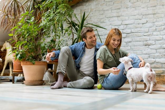 Junge paare, die am rustikalen wohnzimmerboden sitzen und mit hund spielen Premium Fotos