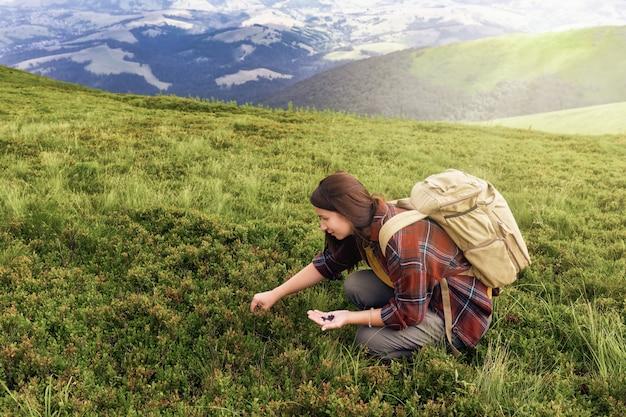 Junge touristin mit einem rucksacktouristen sammelt blaubeeren auf der spitze des berges. aktives lifestyle-konzept Premium Fotos