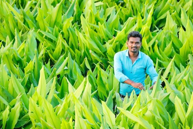 Junger indischer bauer am feld Premium Fotos