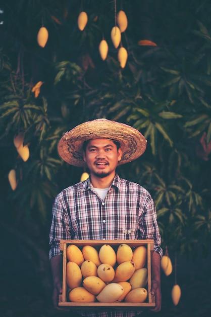 Junger intelligenter landwirt, moderner mangobauernhof Premium Fotos