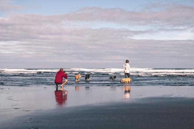 Junger mann, der fotos seiner freundin und seiner hunde auf dem strand macht Premium Fotos